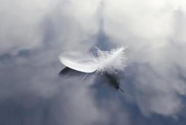 Identità angeliche: è possibile incontrarle? Se lo domanda l'Associazione Archeosofica