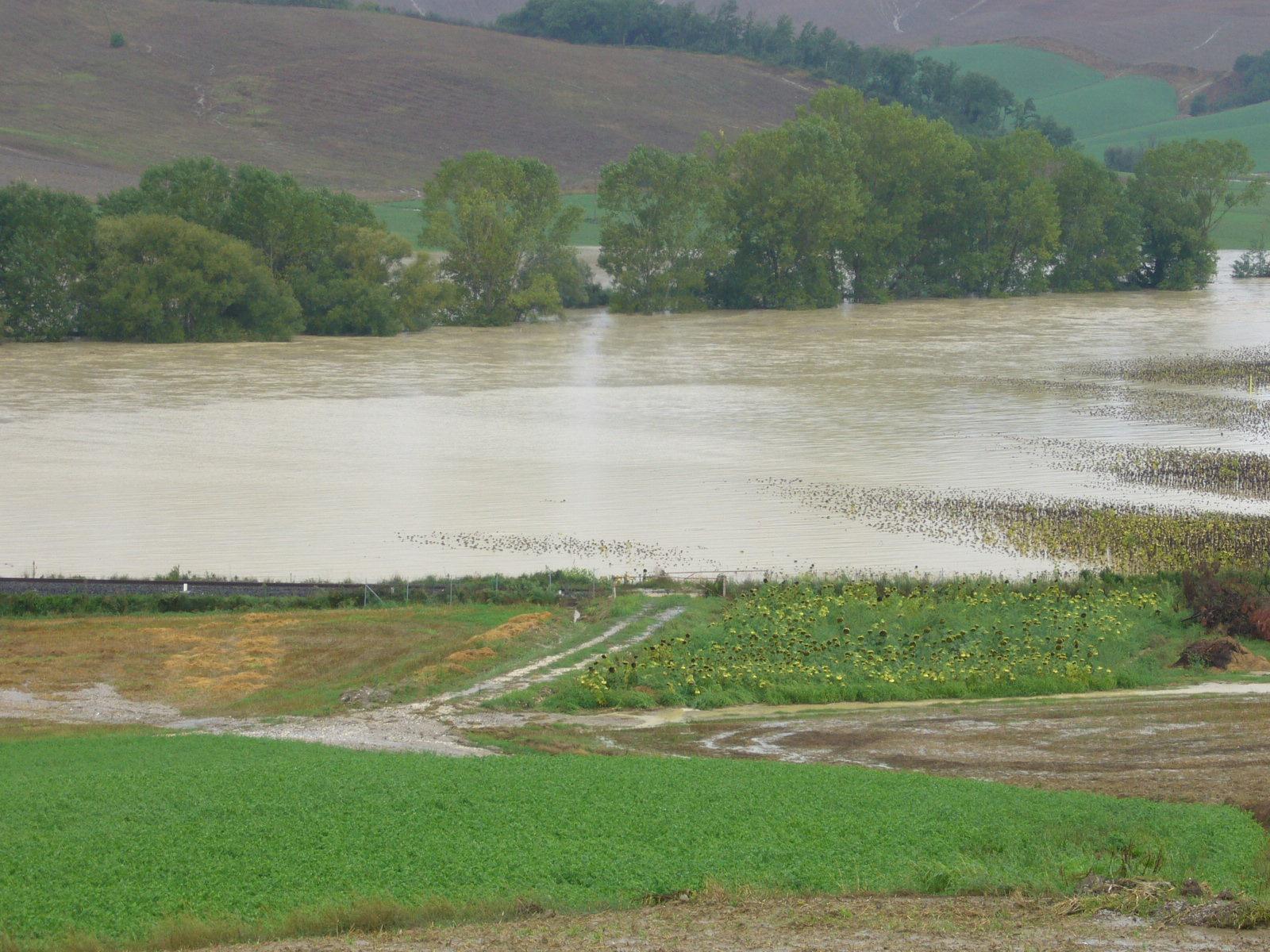 """""""Rischio alluvioni"""": per le aziende agricole nuovi cavilli"""