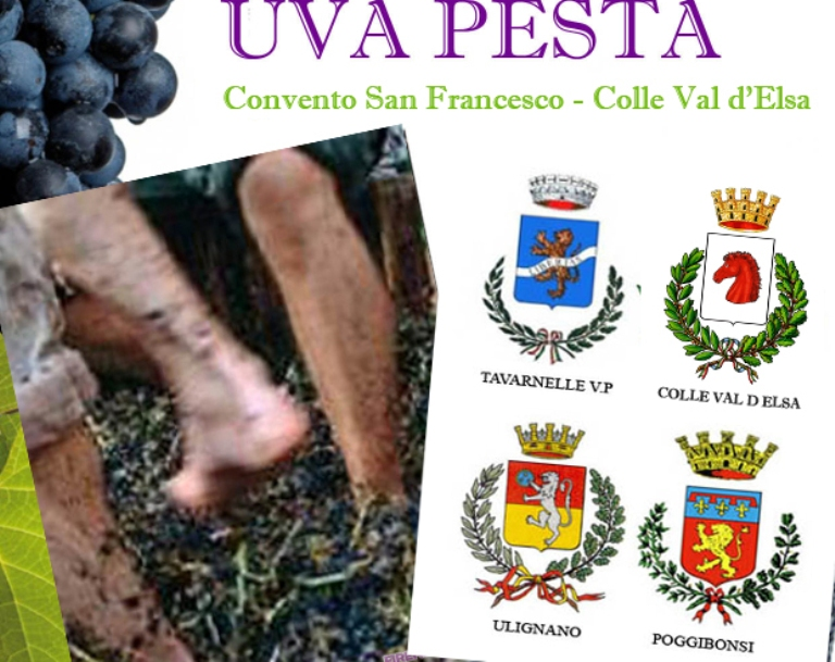 Uva Pesta: sfida tra Colle, Poggibonsi, Tavarnelle e Ulignano