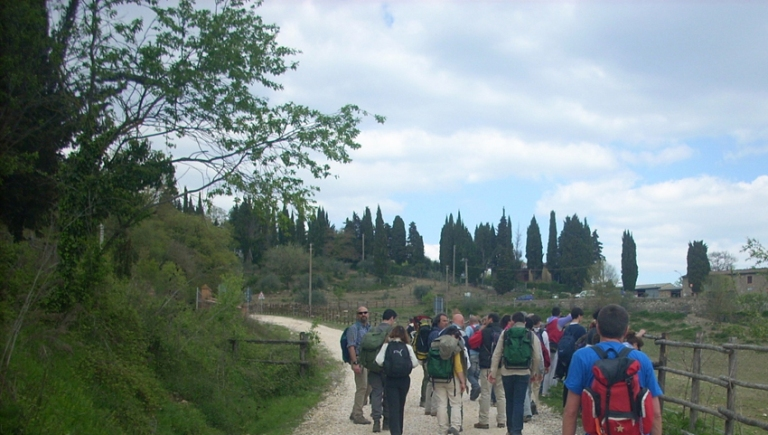 Radicondoli: una domenica nella Riserva di Cornocchia tra escursioni e musica