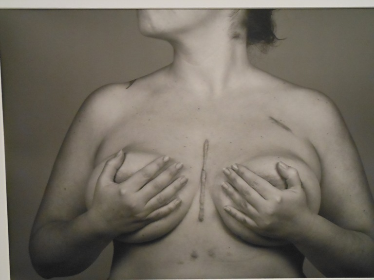 """Inaugurata la mostra fotografica """"Still Close"""""""