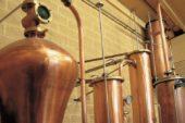 Grapperie aperte: è festa in tre distillerie toscane