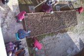 Un orto sociale alla Rsa 'Villa Chigi' con la Fondazione Allianz UMANA MENTE