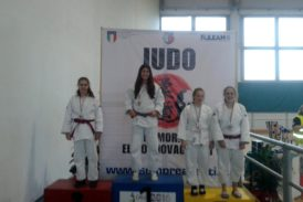 20161204 00 judo bologna 274x183 Home Page