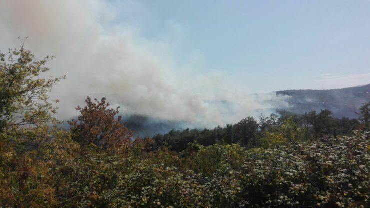 Incendi, ripresa a Montalcinello. La situazione in Toscana