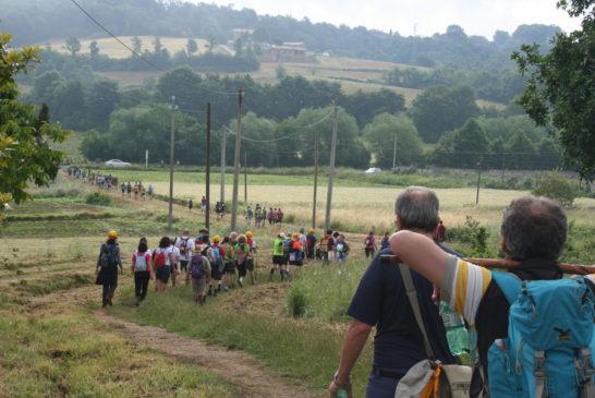 World Francigena Ultramarathon: 120 km no stop