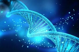 Miopatia con aggregati tubolari: il 3° gene scoperto a Siena