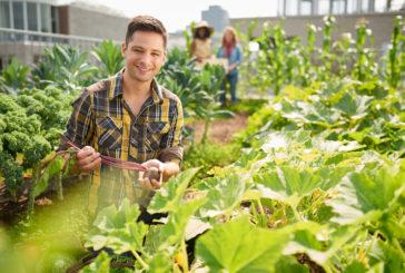 Coldiretti: l'agricoltura è sempre più giovane