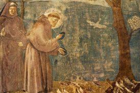 """Da Londra agli Intronati: Maria Giorgi e """"La prima veste di San Francesco"""""""