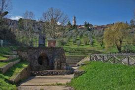 Una Camminata tra gli ulivi in 8 Comuni: itinerari nella cultura dell'olio