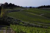 Aperte le iscrizioni alla 1^Chianti Trail Ultra