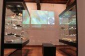Castellina: la leggenda del Gallo Nero raccontata dai bambini