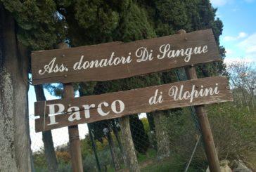 """Al Parco di Uopini c'è """"Il buffet della solidarietà"""""""