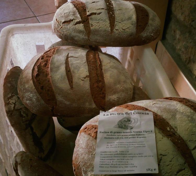 il pane nella dieta quotidiana