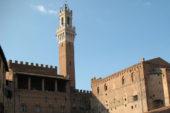 Nuove tariffe per i biglietti dei musei comunali e Torre del Mangia