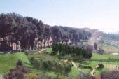 Beni comuni: il Parco delle mura abbraccia la valle del fosso di Ravacciano