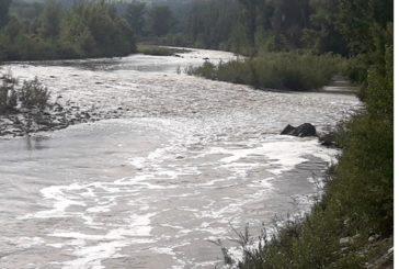Gli ambientalisti denunciano l'inquinamento del Paglia