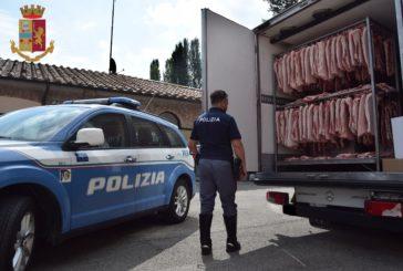 """Polstrada """"scatenata"""" in tutta la Toscana"""