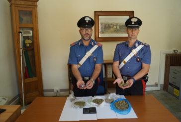 Chiusino arrestato per detenzione di droga