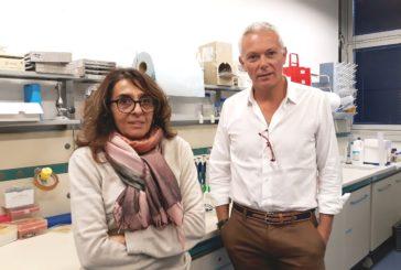Nasce a Siena un centro di alta qualificazione in campo biomedico