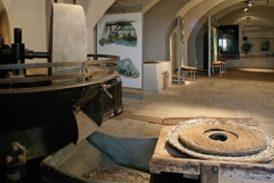 Rapolano Terme: Festa dell'Olio fra arte contemporanea e territorio