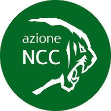 """Azione NCC: """"Attendiamo risposte dal Governo"""""""