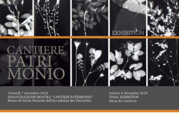 Arte, artigianato, design: la mostra Cantiere Patrimonio rilegge Siena