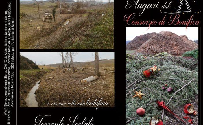 """Cartoline natalizie """"ironiche"""" per difendere i fiumi"""