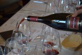 Wine&Siena 2019 è anche solidarietà: all'asta vini di pregio