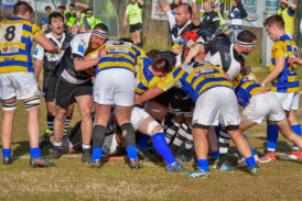 Rugby: il Cus Siena perde con Parma 24-38