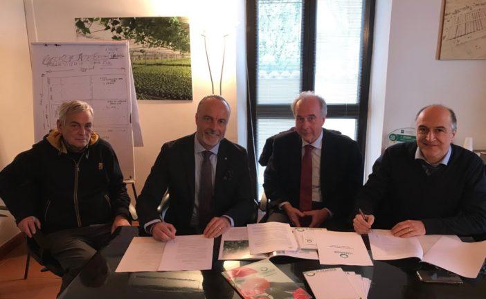 Geotermia: nuovo accordo tra Enel GP e Floramiata