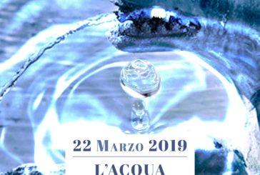 """A Siena """"L'Acqua nel Campo"""""""