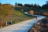 Chianti Trail Ultra: torna la grande sfida tra colline e vigneti