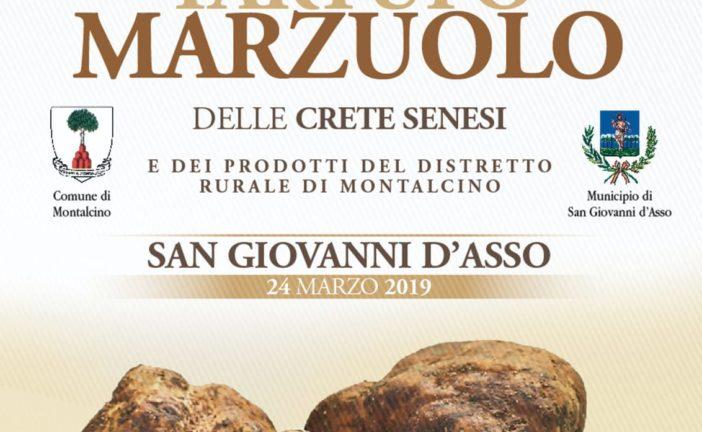 San Giovanni d'Asso celebra il tartufo Marzuolo