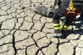 Salvato un daino intrappolato nel fango a Pienza