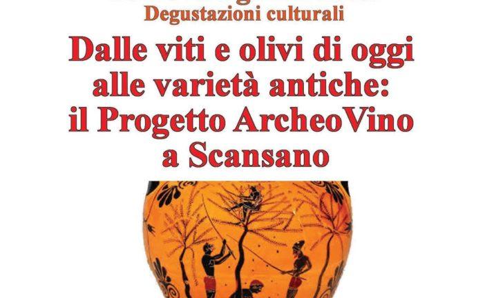Al Museo di Chianciano si parla del Progetto archeo Vino a Scansano