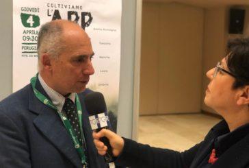 """La denuncia di Confagricoltura: """"Ungulati: in Toscana oltre 400mila capi"""""""