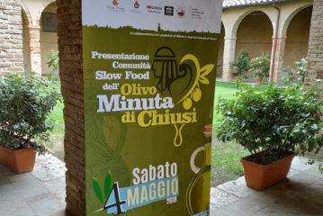 Comunità Slow Food per la valorizzazione dell'olivo minuta di Chiusi