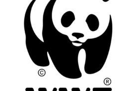 Allerta pioggia: il WWF chiede una profonda revisione dei piani di gestione