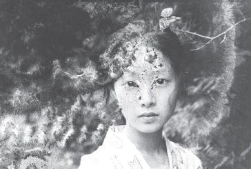 Effetto Araki: Siena celebra il fotografo giapponese con 2200 immagini