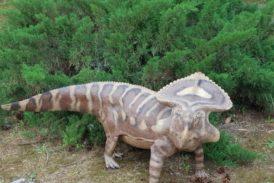 """""""Jurassic Orto"""": dinosauri a grandezza naturale in mostra all'Orto Botanico"""