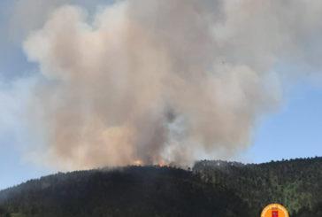 Incendio boschivo a San Lorenzo a Merse