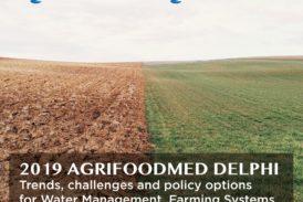 Studio di Unisi sulla sostenibilità agroalimentare e idrica nel Mediterraneo