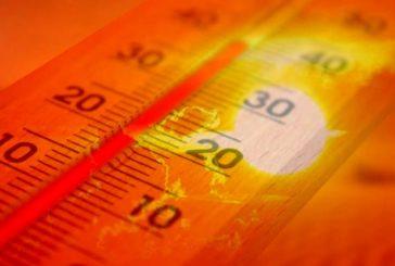 """Uecoop: """"Caldo: rischio malori per gli anziani soli"""""""