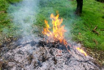 Anticipato il divieto di abbruciamenti agricoli: scatta da lunedì 24 giugno