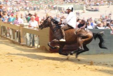 Palio: 76 cavalli alle prove regolamentate, 8 direttamente alla tratta