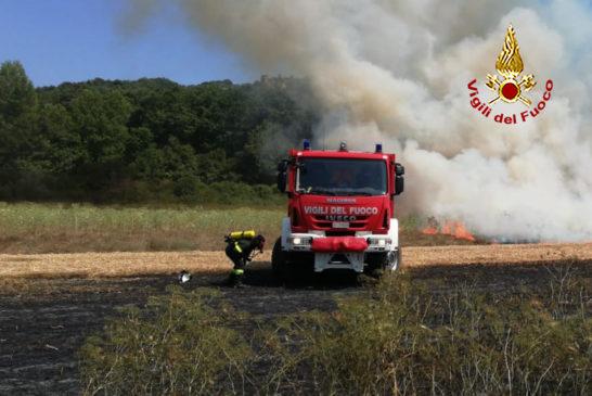 Trattore e vegetazione a fuoco: pompieri e Aib al lavoro