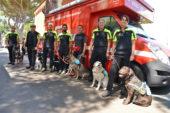 Vigili del fuoco: premiate le unità cinofile