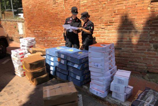 I Carabinieri Forestali sequestrano 835 chili di surgelati