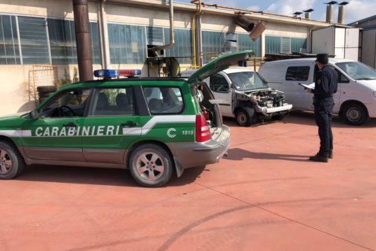 Lavoro nero e sicurezza: i Carabinieri Forestali impegnati a Montepulciano